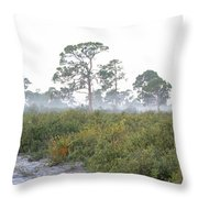 Misty Morning On The Trail Throw Pillow
