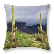 Misty Morning Peralta Throw Pillow
