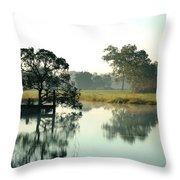 Misty Morning Pond Throw Pillow