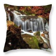 Misty Morning Waterfall Throw Pillow