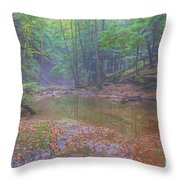 Misty Morning Woodscape Two Throw Pillow