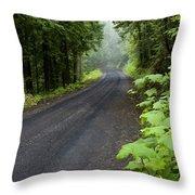 Misty Mountain Road Throw Pillow