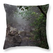 Misty Rainforest El Yunque Mirror Image Throw Pillow