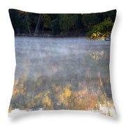 Dark Shoreline Frames Misty Fall Reflections On Jamaica Pond Throw Pillow