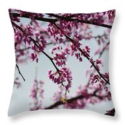 Misty Spring Morning Throw Pillow