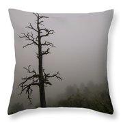 Misty Tree Throw Pillow