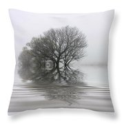 Misty Wetlands Throw Pillow