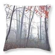 Misty Woodland Showing The Last Fall Color Throw Pillow