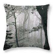 Misty Woods, Juniper Throw Pillow