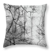 Misty Woods, Whitley Mill Throw Pillow