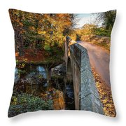 Mitford Bridge Over River Wansbeck Throw Pillow