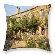 Mix Of Old And New Throw Pillow
