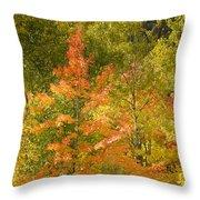 Mixed Autumn Throw Pillow