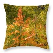 Mixed Autumn Throw Pillow