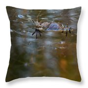 Mixed Frogs Hands Up Throw Pillow