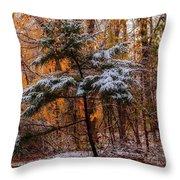 Mixed Seasons Throw Pillow