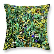 Mixed Wildflowers In Texas Throw Pillow