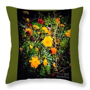 Mixture Of Flowers On Summer Day Throw Pillow