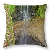 Mna Memorial Falls Throw Pillow
