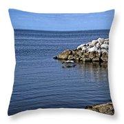 Mobile Bay 4 Throw Pillow