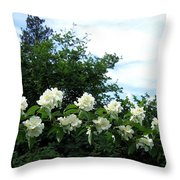 Mock Orange Blossoms Throw Pillow