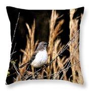 Mocking Bird 2 Throw Pillow