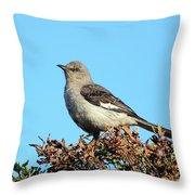 Mockingbird . 7682 Throw Pillow