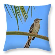 Mockingbird In A Palm Tree Throw Pillow