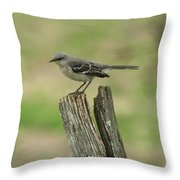 Perched On An Old Fence Throw Pillow