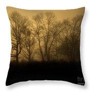 Morning Fog, #2, Smoky Mountains, Tennessee Throw Pillow