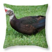 Mohawk Duck Throw Pillow