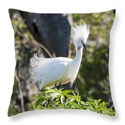 Mohawk Throw Pillow