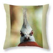 Mohican Bird Throw Pillow