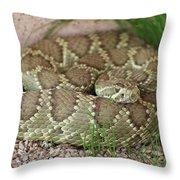 Mojave Green Throw Pillow