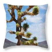 Mojave Joshua Tree Throw Pillow