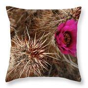 Mojave Magenta Throw Pillow