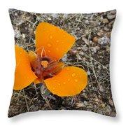 Mojave Orange Throw Pillow