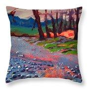 Molalla River Shore 7 Throw Pillow