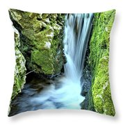 Moine Creek Goes Vertical Throw Pillow