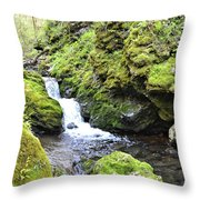 Moine Panorama 2 Throw Pillow