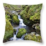 Moine Panorama Throw Pillow