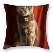 Mollie Throw Pillow