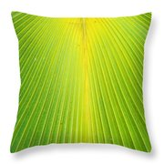 Molokai Palm Fan Throw Pillow