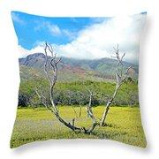 Molokai Surrealism Throw Pillow
