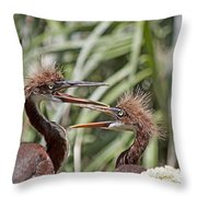 Mom Always Liked You Best Throw Pillow