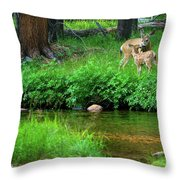 Mom And Baby Deer Throw Pillow