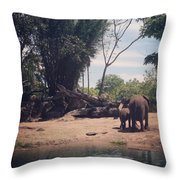 Mom And Baby Throw Pillow