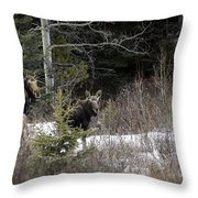 Mom And Calf  In The Forest Throw Pillow