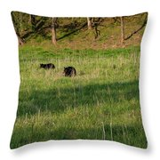 Mom And Cub Throw Pillow
