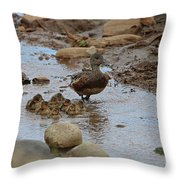 Mom Mallard And Ducklings Throw Pillow